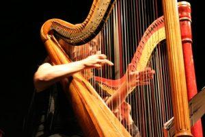 15 Macam Macam Alat Musik Petik Modern dan Tradisional